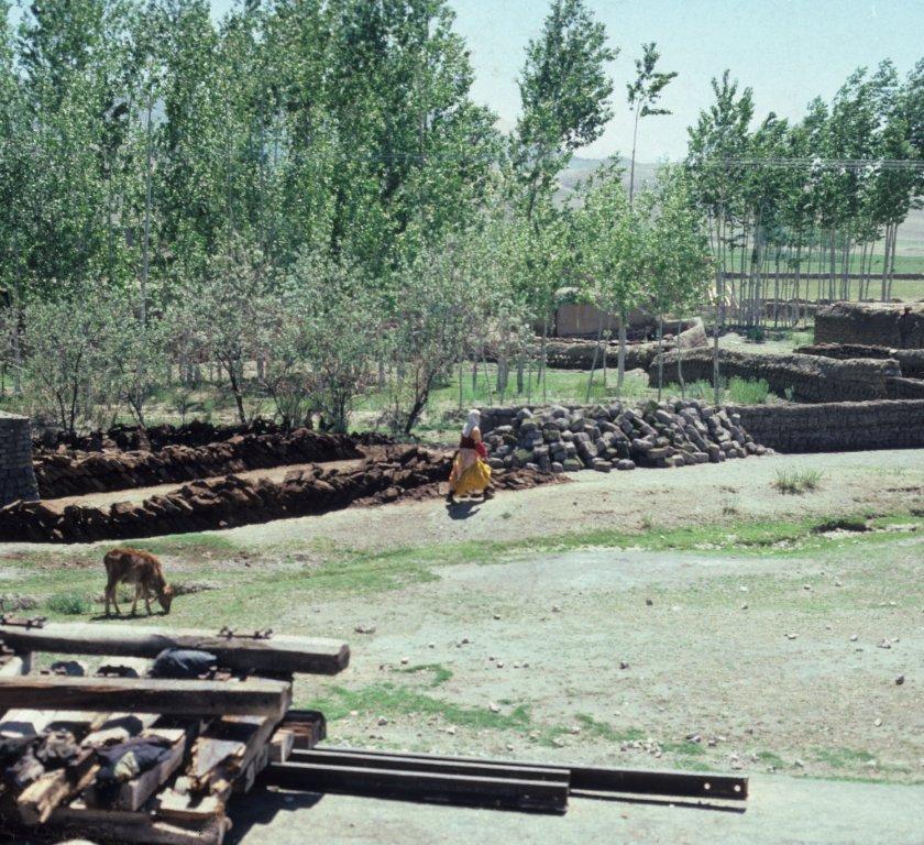 1960 isfahan